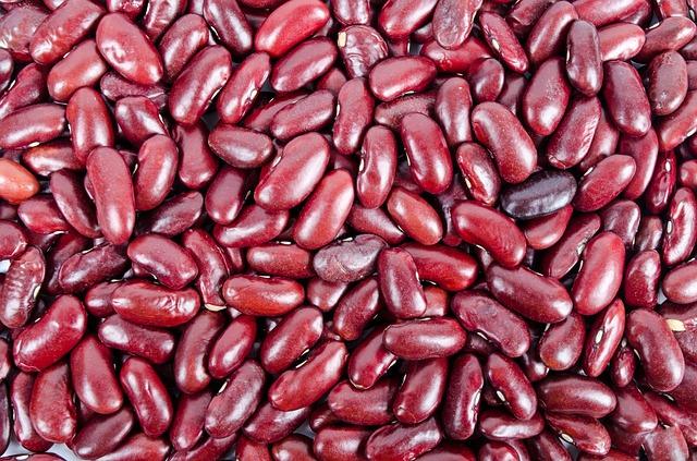Eiweiß Diät - rote Bohnen