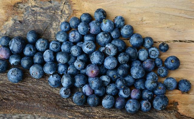 Eiweiß Diät - Blaubeeren